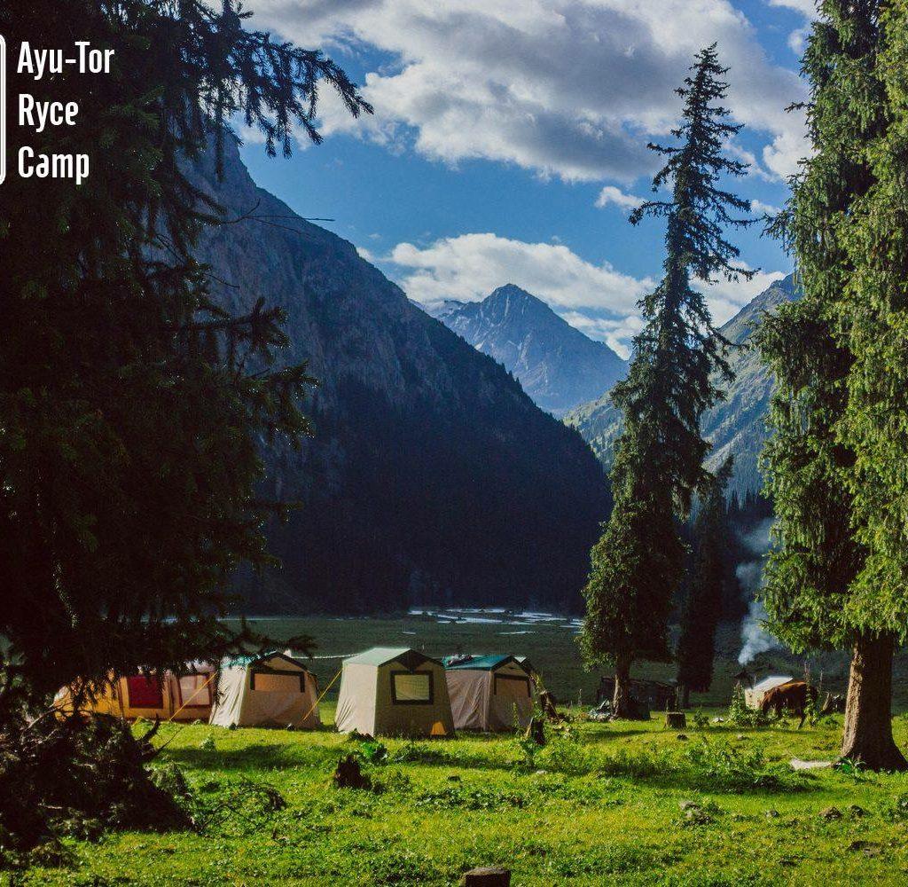Ayu Tor Ryce Camp