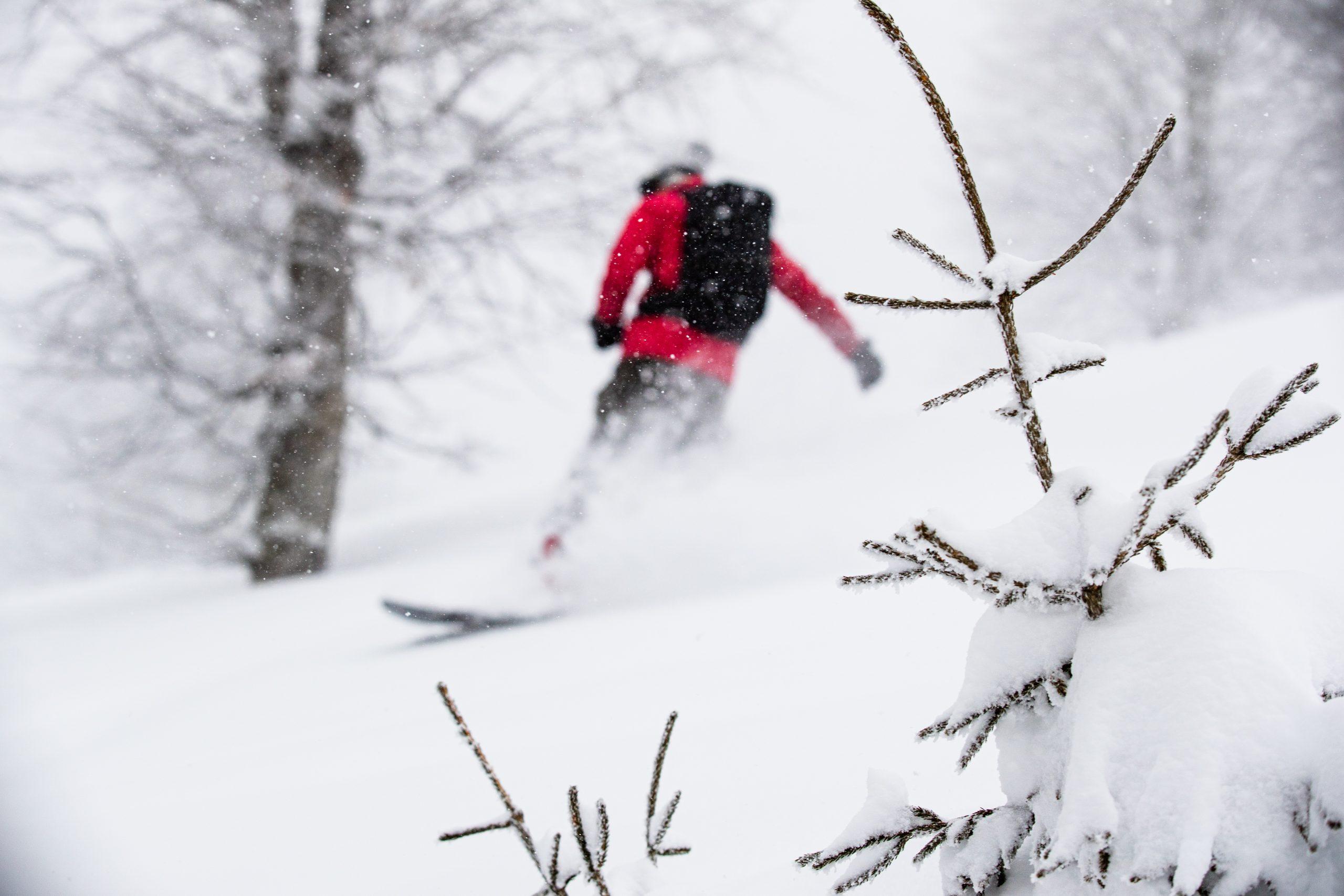 Skiing Georgië