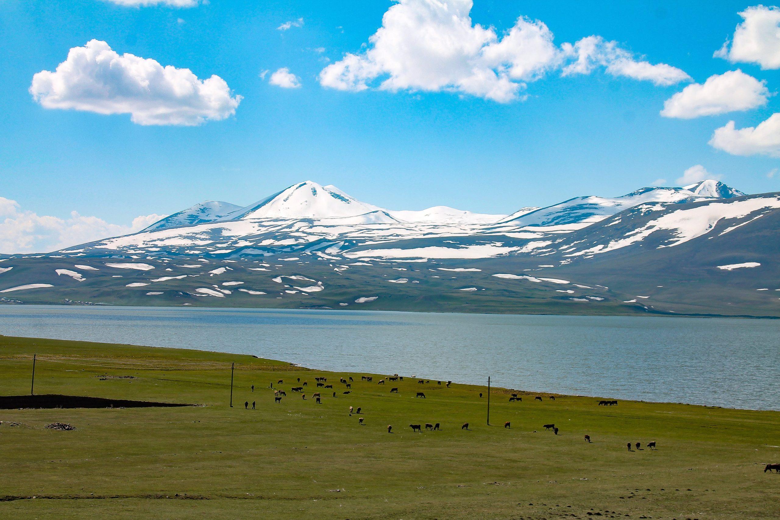 Natuur landschap Georgië