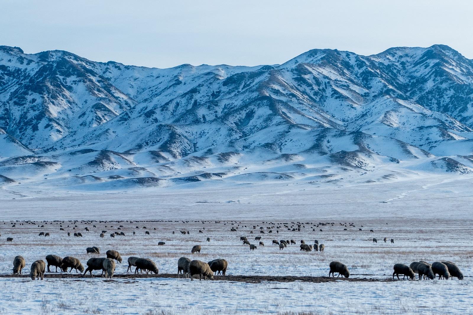 Road Kazakhstan