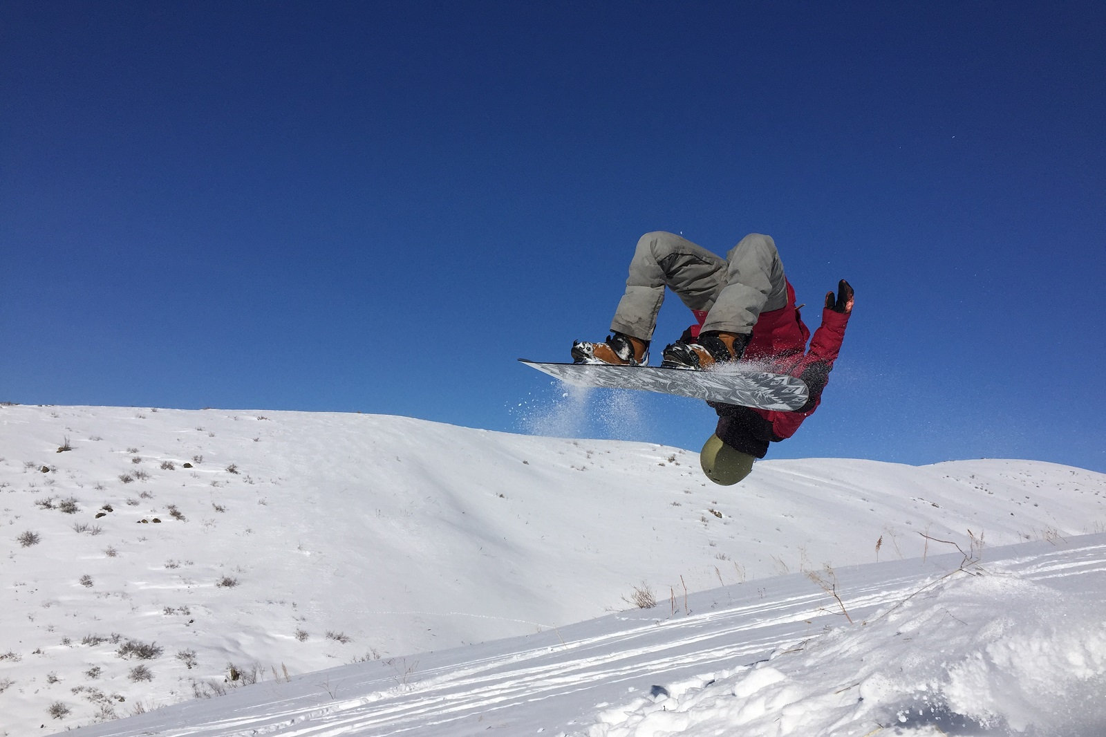 Snowboard Dzungarian